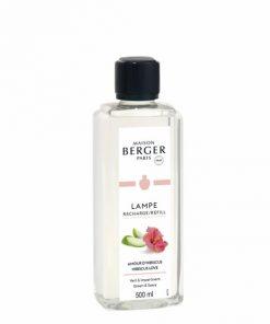 Berger - Amour d'hibiscus